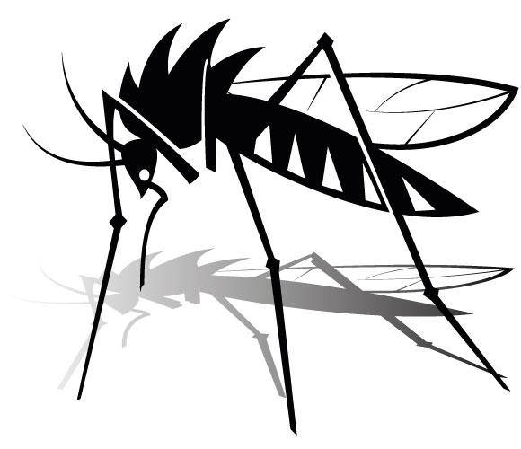 Mosquito Vector Graphics