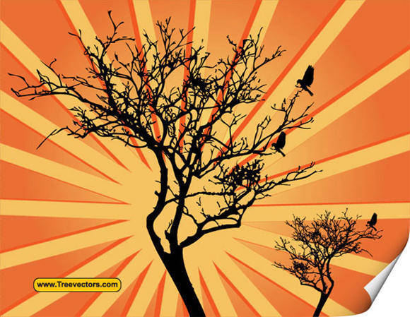 free vector Vector Sunburst Background with Tree