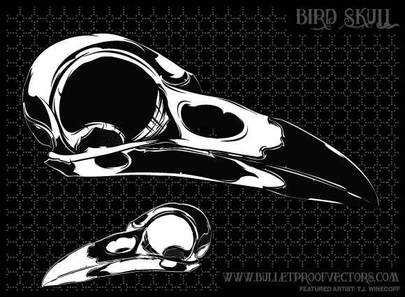 free vector Bird Skull