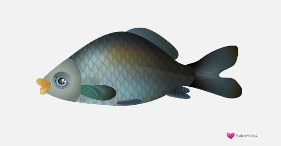 Vector Fish - Carp