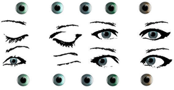 Female eye stock free vector