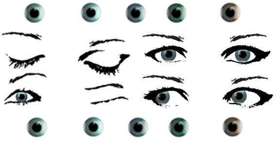 Female eye stock free vector