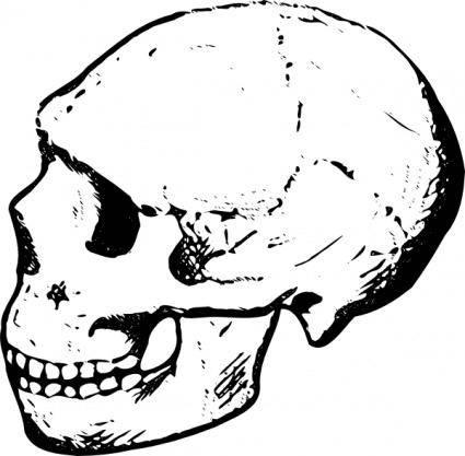 free vector Skull clip art