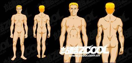 free vector Male human vector material