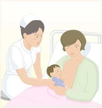 Mother Vector 6
