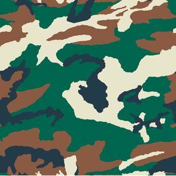 Camouflage Pattern 2