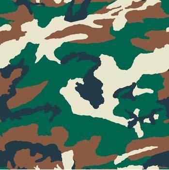 Camouflage Pattern 2