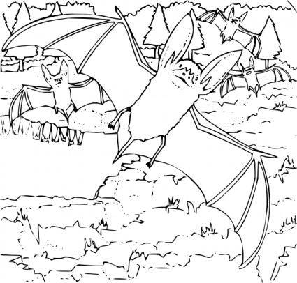 free vector Coloring Book Ozark Big Eared Bat clip art