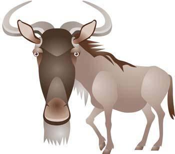 Antelope Vector 2