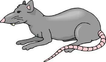 free vector Mice 14