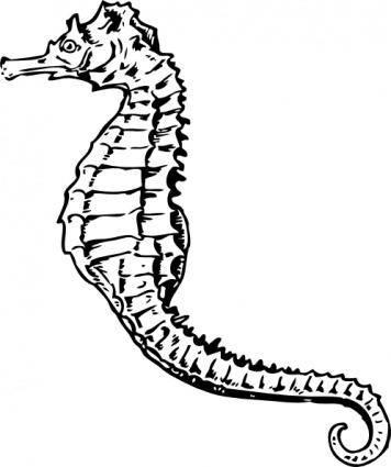 free vector Seahorse clip art