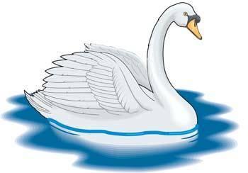 free vector Swan 6