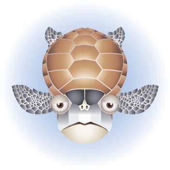 free vector Turtle 4