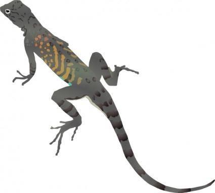 Az-lizard clip art