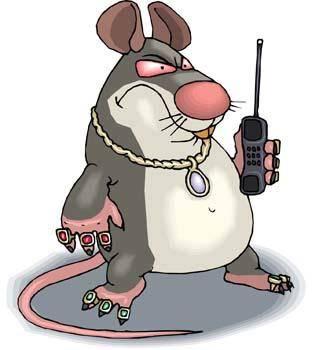 Mice 12
