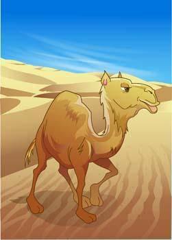 Camel Vector 15