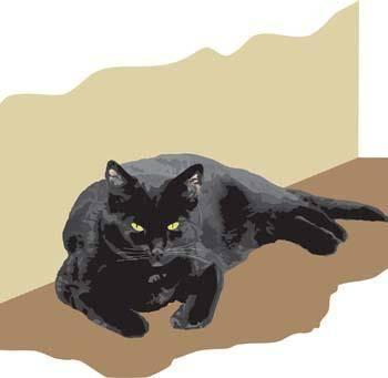 Cat vector 50