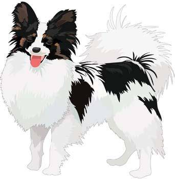 Dog Vector 51