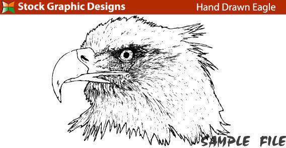 free vector Eagle head