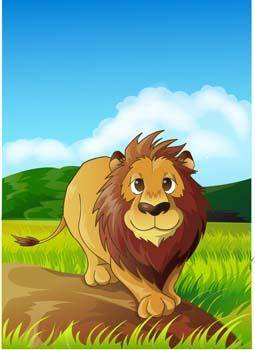 free vector Lion 12