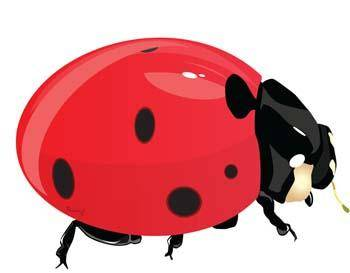 free vector Red Bugs 1