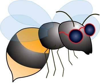 free vector Bee 6