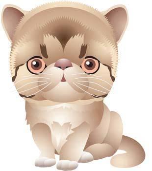 free vector Cat vector 65