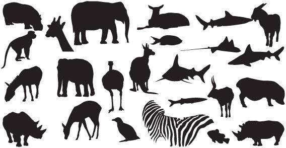 free vector Safari zoo animals