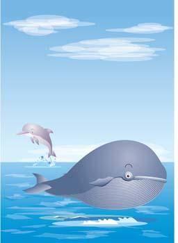 free vector Cute whale 2