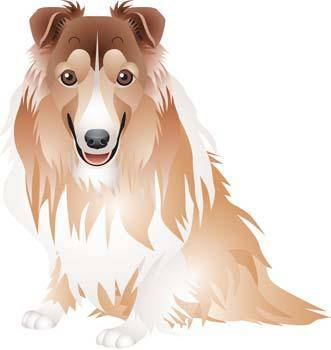 Dog vector collections 1