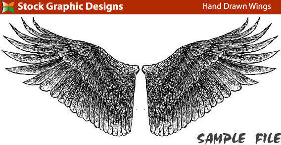 Hand drawn bird wings free vector