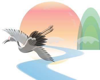 Bird Vector 8