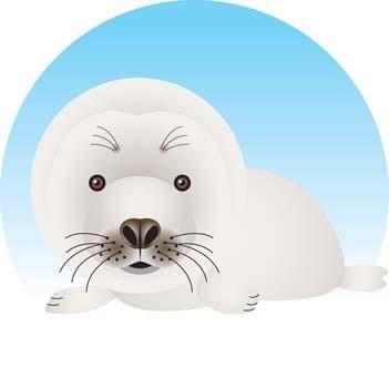 free vector Seals 4