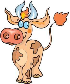 Cow 18
