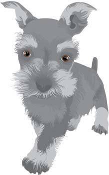 free vector Terrier 4