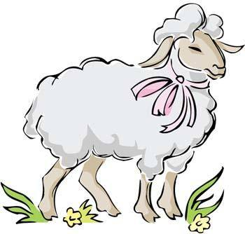 Sheep vector 1