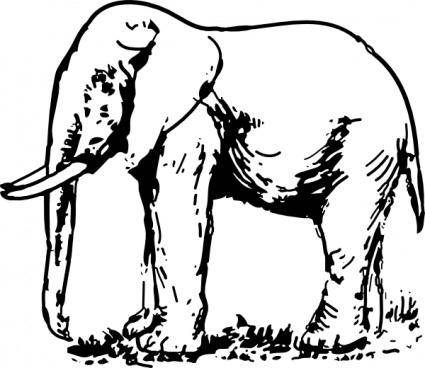 Elephant Drawing clip art