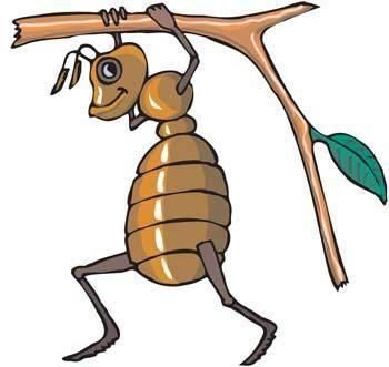 Bee Vector 9