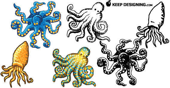 Octopus design free vectors