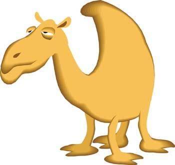 Camel Vector 2