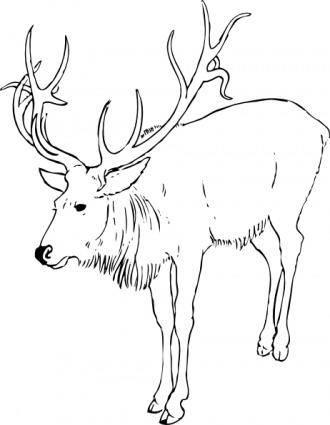 free vector Reindeer Stag clip art