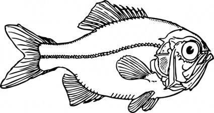 free vector Ugly Fish clip art