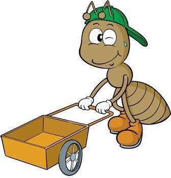 Bee Vector 8