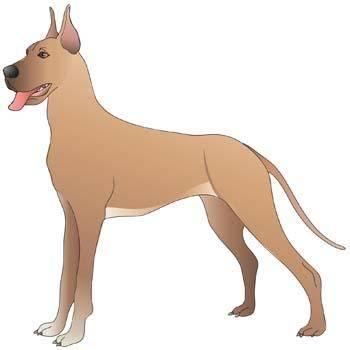 free vector Dog Vector 25