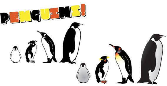 free vector Penguins free vector