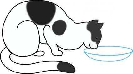 White Cat Drinking clip art