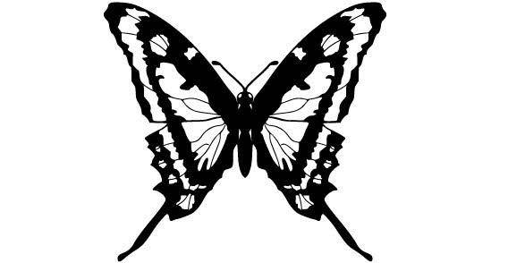 Black white Butterfly free vector