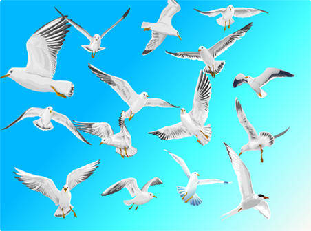 free vector Seagulls in blue sky free vector