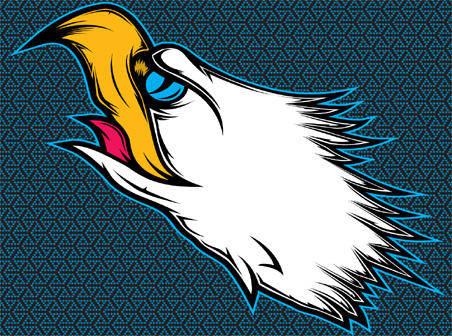free vector Eagle head vector illustration