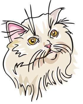 Cat Face vector 3
